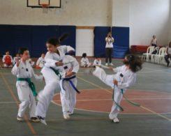 taekwondo3-21