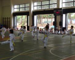 taekwondo3-28
