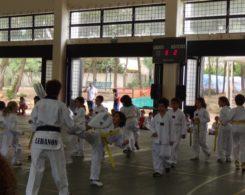taekwondo3-29