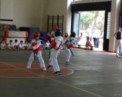 taekwondo3-3