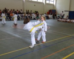 taekwondo3-30