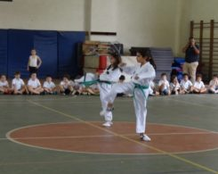 taekwondo3-4