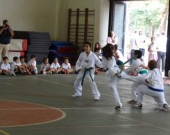 taekwondo3-5