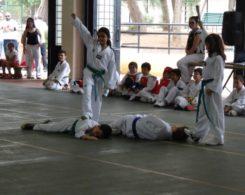 taekwondo3-6