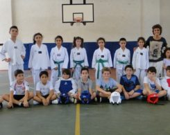taekwondo3-8