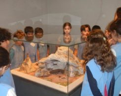 ce2b-musee-prehistoire-2