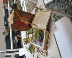 Exposition arts plastiques (29)