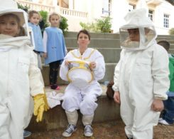 Sortie abeilles (15)