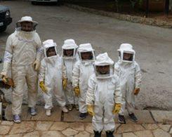 Sortie abeilles (2)