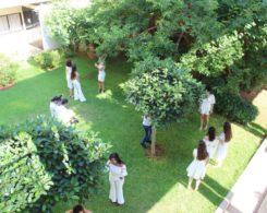 promo diplomes (33)