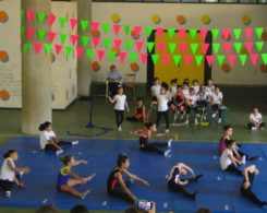 gym art primaire (1)