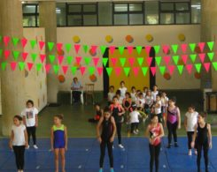 gym art primaire (10)