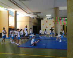 gym artistique (1)