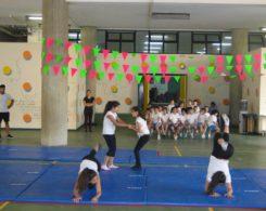 gym artistique (11)