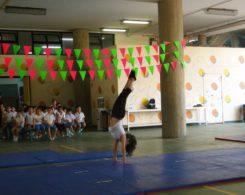 gym artistique (2)