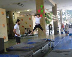 gym artistique (5)