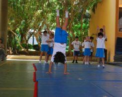 gym artistique (7)