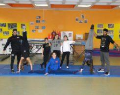 gym artistique (8)