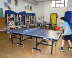 ping pong (4)