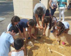 Archeologie-prim (8)