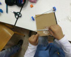 Sciences primaire CE1 (4)