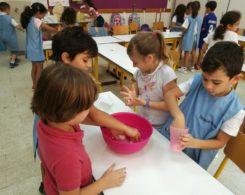 Sciences primaire CE1 (7)