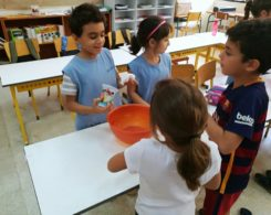 Sciences primaire CE1 (8)