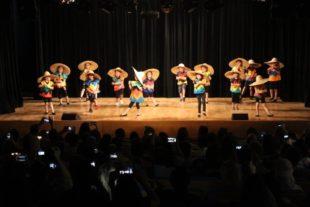 danse du monde (9)