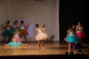 danse classique et contemporaine (19)
