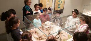 musee prehistoire (2)
