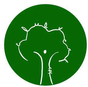 club vert 11
