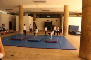 gymnastique artistique (2)