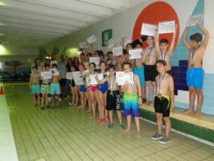 natation (4)