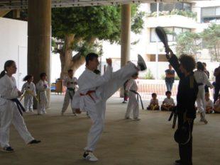 taekwondo (14)
