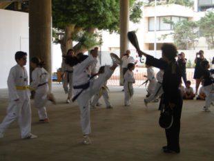 taekwondo (15)