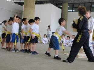 taekwondo (17)