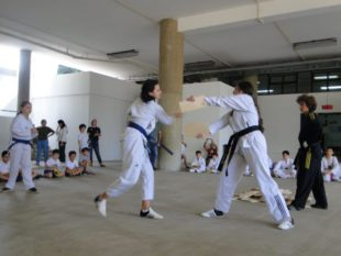 taekwondo (18)