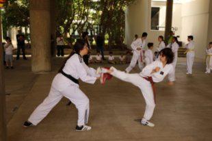 taekwondo (23)