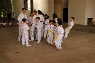 taekwondo (24)