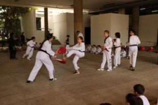 taekwondo (25)