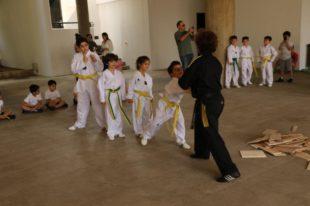 taekwondo (6)